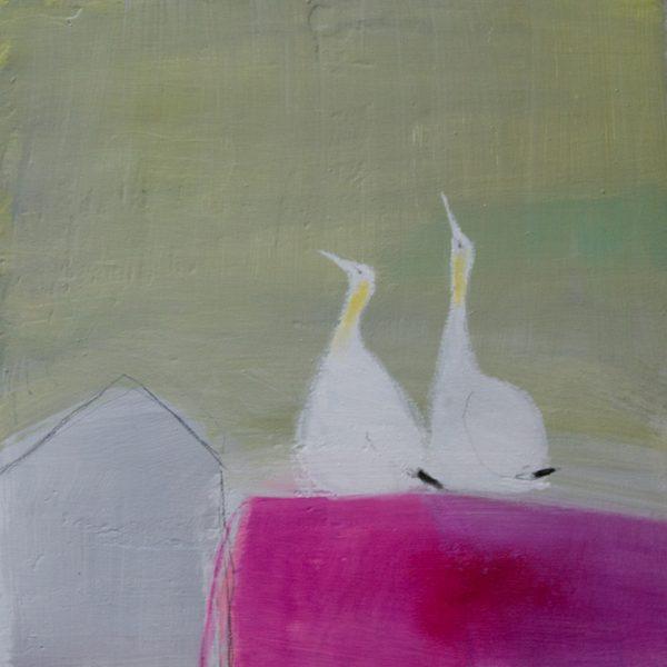 2-gannets-600x600